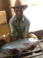 Bangshi River Catla