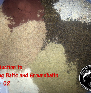 Introduction to Fishing Baits and Ground-baits